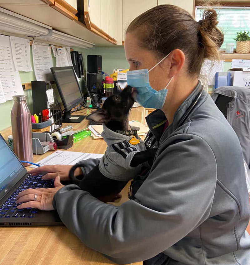 College Park Veterinary Careers